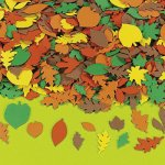 Autumn Self Adhesive Foam Shapes:  Pack of 50